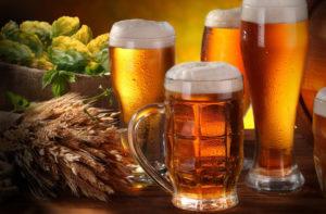 Bier, Hopfen und Gerste