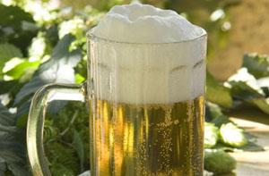 """Quelle: Fotolia, Václav Mach, """"Bier mit Hopfendolden"""", 9918833"""