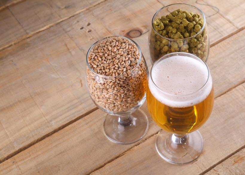 "Quelle: Fotolia, hiddenhallow, ""Light beer and ingredients"", 104364010"